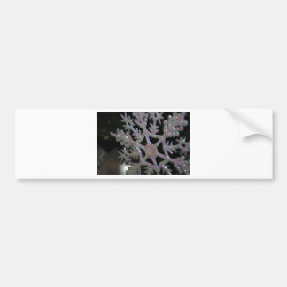 CHRISTMAS SNOWFLAKE BUMPER STICKER