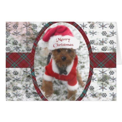Christmas Snowflakes & Santa Snow Dog Card
