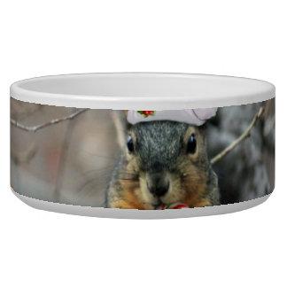 Christmas Squirrel Bowl