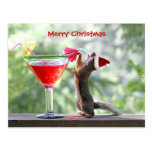 Christmas Squirrel Drinking a Cocktail Postcard