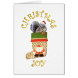 Christmas Squirrel Greeting Cards