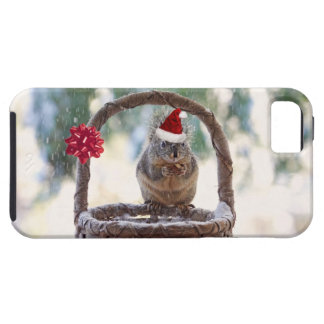 Christmas Squirrel in a Snowy Basket iPhone 5 Cover