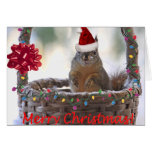Christmas Squirrel in Basket with Snow Greeting Card