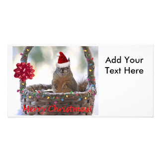 Christmas Squirrel in Basket with Snow Photo Card