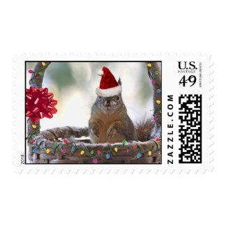 Christmas Squirrel in Basket with Snow Stamp