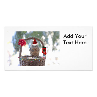 Christmas Squirrel in Snowy Basket Card