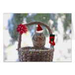 Christmas Squirrel in Snowy Basket Stationery Note Card