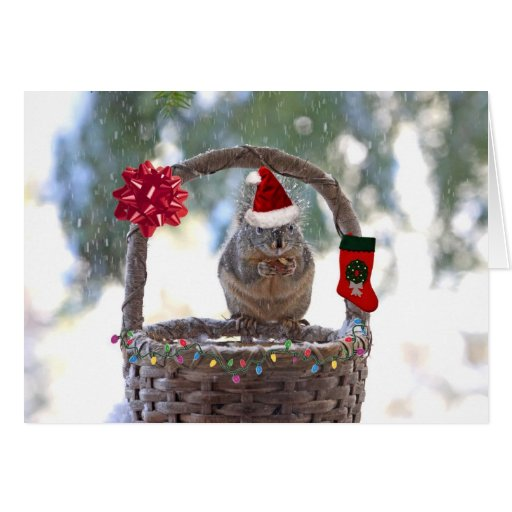 Christmas Squirrel in Snowy Basket Card
