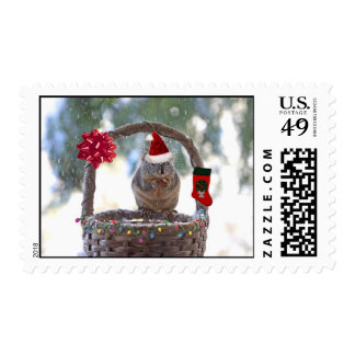 Christmas Squirrel in Snowy Basket Postage Stamp