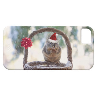 Christmas Squirrel in the Snow iPhone 5 Cover