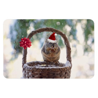 Christmas Squirrel in the Snow Vinyl Magnet