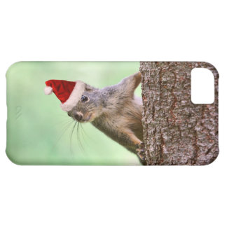 Christmas Squirrel on a Tree iPhone 5C Covers