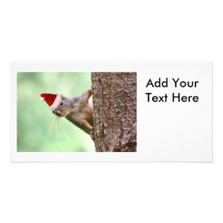 Christmas Squirrel on a Tree Photo Greeting Card