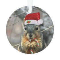 Christmas Squirrel Ornament