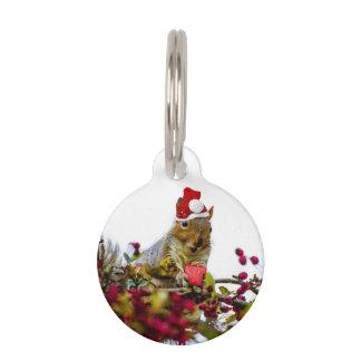 Christmas Squirrel Pet ID Tag