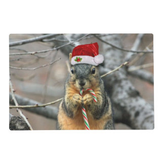 Christmas Squirrel Placemat