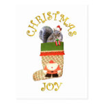 Christmas Squirrel Post Cards
