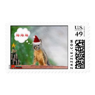 Christmas Squirrel Saying Ho Ho Ho Postage Stamp
