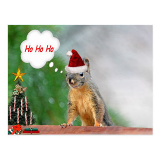 Christmas Squirrel Saying Ho Ho Ho Postcard