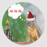 Christmas Squirrel Saying Ho Ho Ho Round Stickers