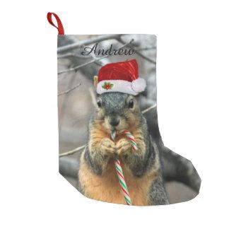 Squirrel Christmas Stockings & Squirrel Xmas Stocking Designs | Zazzle