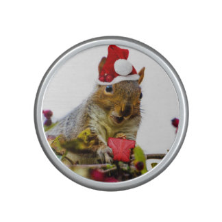 Christmas Squirrel Speaker