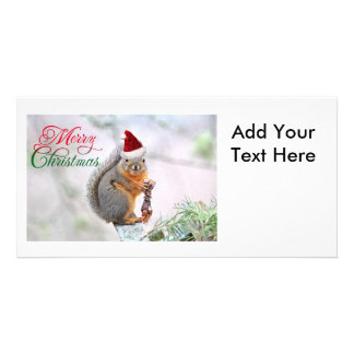 Christmas Squirrel Wearing Santa Claus Hat Personalized Photo Card
