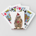 Christmas Squirrel with Candy Cane Card Deck