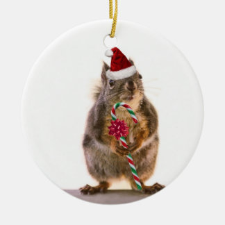 Christmas Squirrel with Candy Cane Ceramic Ornament