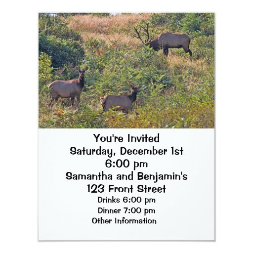 Christmas Squirrel with Candy Cane 4.25x5.5 Paper Invitation Card