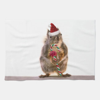 Christmas Squirrel with Candy Cane Kitchen Towels