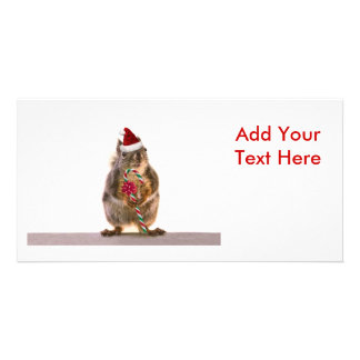 Christmas Squirrel with Candy Cane Photo Card