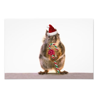 Christmas Squirrel with Candy Cane Photo Print