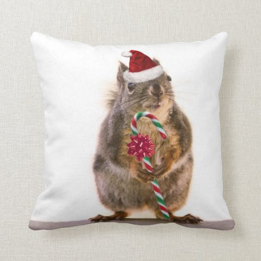 Christmas Squirrel with Candy Cane Pillows