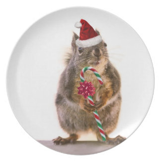 Christmas Squirrel with Candy Cane Plate