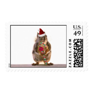 Christmas Squirrel with Candy Cane Postage
