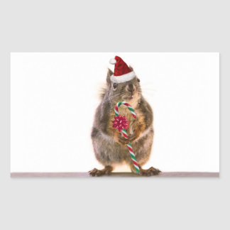 Christmas Squirrel with Candy Cane Sticker