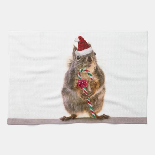 Christmas Squirrel with Candy Cane Towel