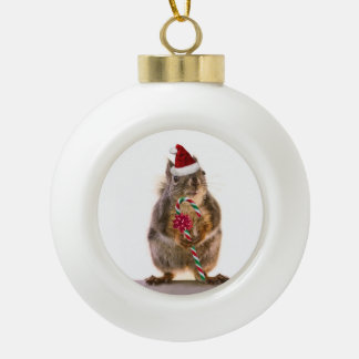 Christmas Squirrel with Candy Cane Tree Ornament