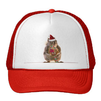 Christmas Squirrel with Candy Cane Trucker Hat