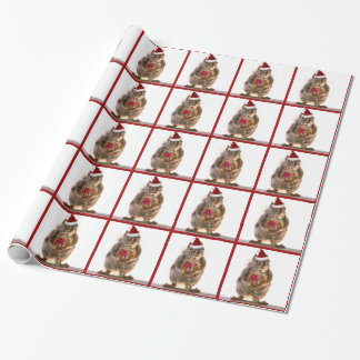 Christmas Squirrel with Candy Cane Wrapping Paper
