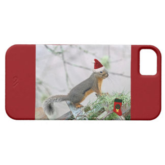 Christmas Squirrel with Christmas Stocking iPhone 5 Cases