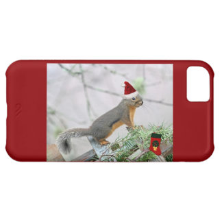 Christmas Squirrel with Christmas Stocking iPhone 5C Cases