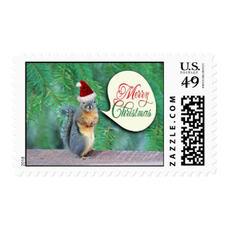 Christmas Squirrel with Evergreen Tree Background Stamps