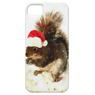 Christmas Squirrel With Santa Hat In Snow iPhone SE/5/5s Case