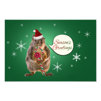 Christmas Squirrel with Snowflakes Photo Print