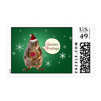 Christmas Squirrel with Snowflakes Postage