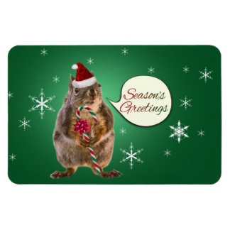 Christmas Squirrel with Snowflakes Magnet