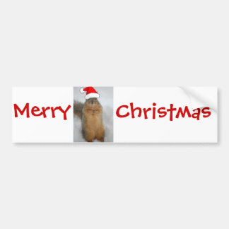Christmas Squirrels Bumper Sticker