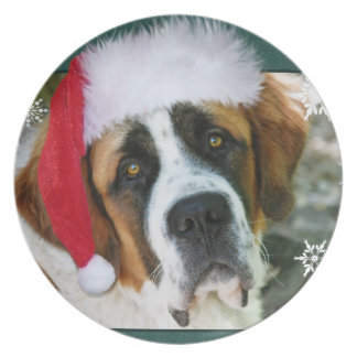 Christmas St. Bernard Dog Photo Dinner Plate